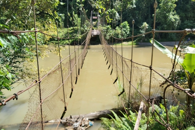 Sempat Viral, Berikut Penjelasan Kades Pamoseang Terkait Jembatan Gantung