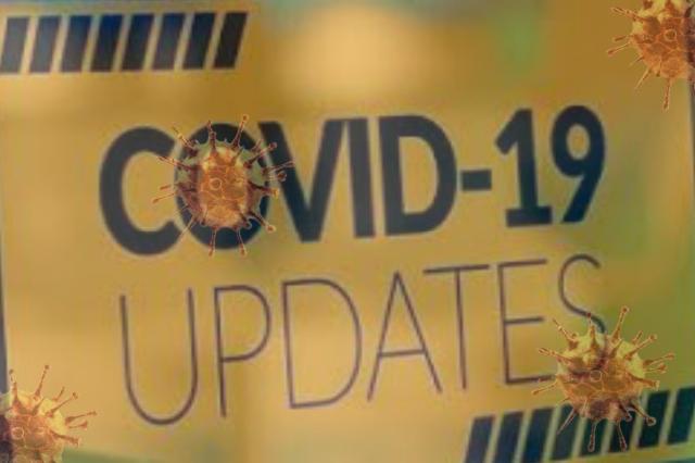 Update Covid-19 di Wilayah Kabupaten Mamasa, Sabtu 24 Juli 2021
